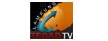 TegarTV