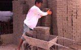 Pembuatan Paving Blok Segmen 2